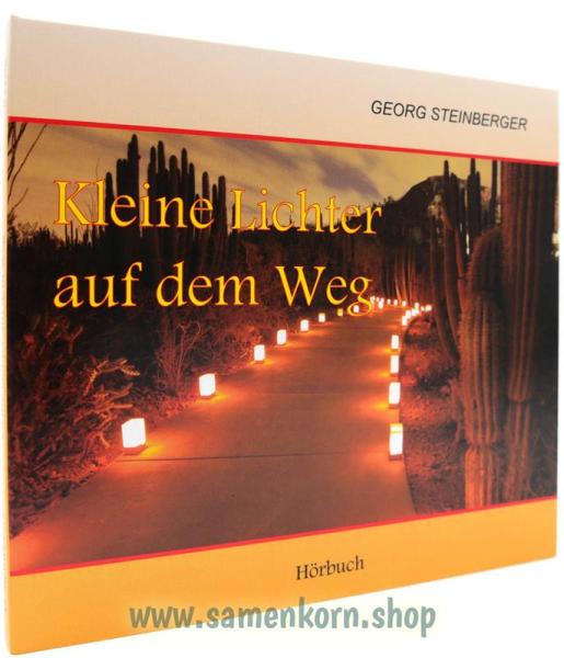 01108_Kleine_Lichter_auf_dem_Weg.jpg