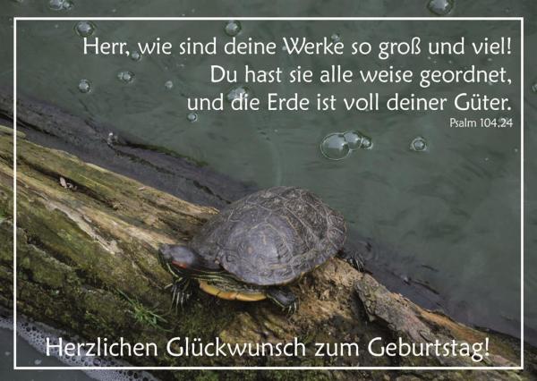 Postkarte_zum_Geburtstag_8.jpg