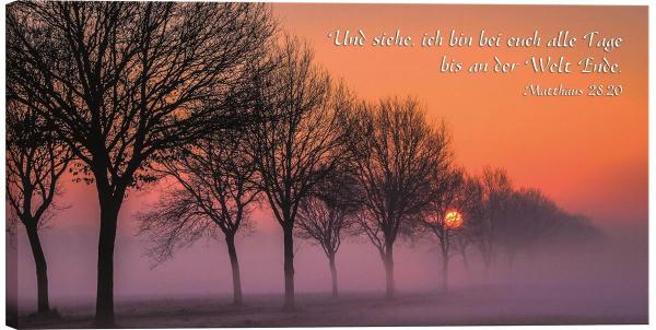 Sonnenaufgang_bei_Nebel.jpg