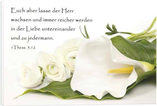 Weisse_Calla_und_Rosen.jpg
