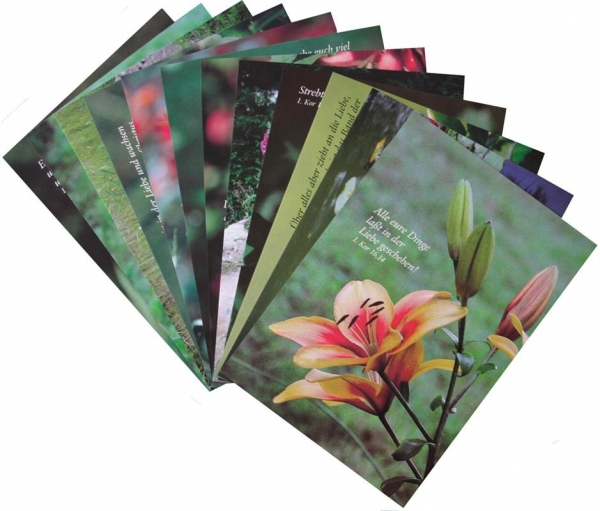 Postkartenset_Blumen.jpg