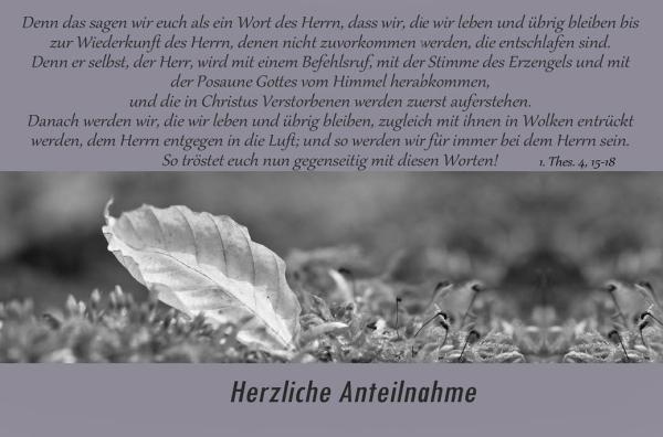 4733___Herzliche_Anteilnahme2.jpg