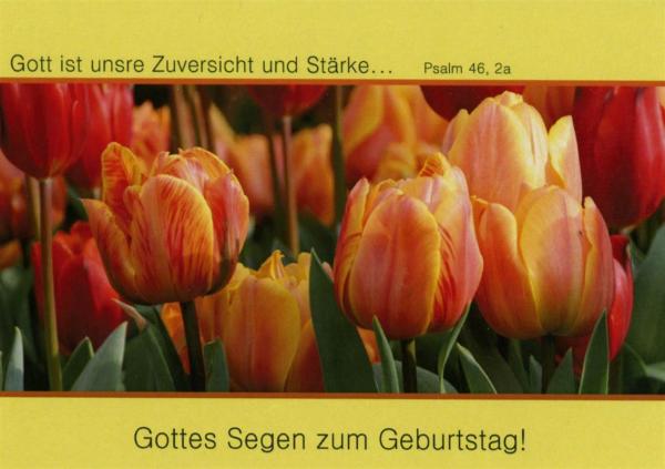 Doppelkarte_Geburtstag_8.jpg