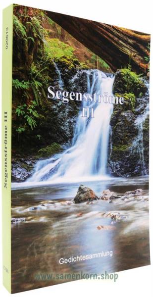 020613_Segensstroeme_III.jpg