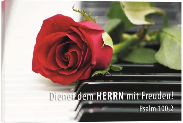Rose_auf_Klavier.jpg