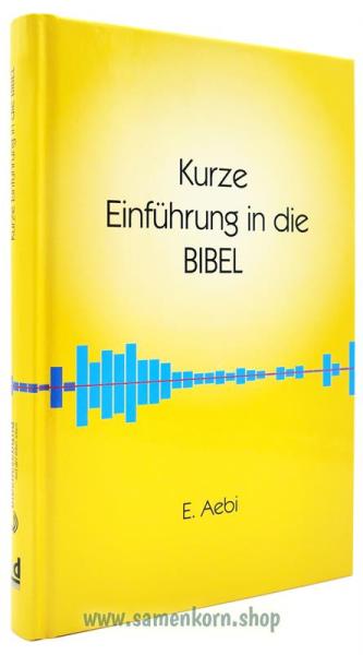 144284_Kurze_Einfuehrung_in_die_BIBEL.jpg